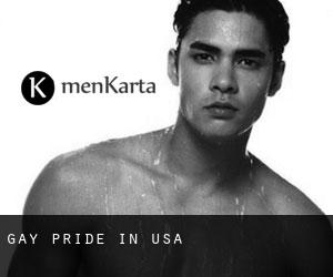 Gay Pride in USA