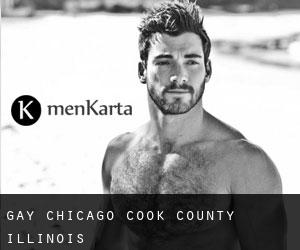 gay Chicago (Cook County, Illinois)