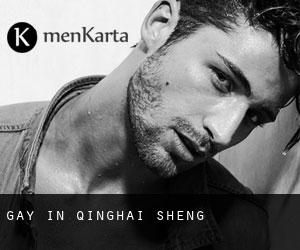 Gay in Qinghai Sheng